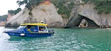 Explore Cathedral Cove, Volcanic Coastal Scenery and the Marine Reserve on this unique 2hour scenic cruise. See the amazing marine life including many fish species, stingrays, crayfish and more. Watch the marine life through the glass or take the plunge and swim with the fish.