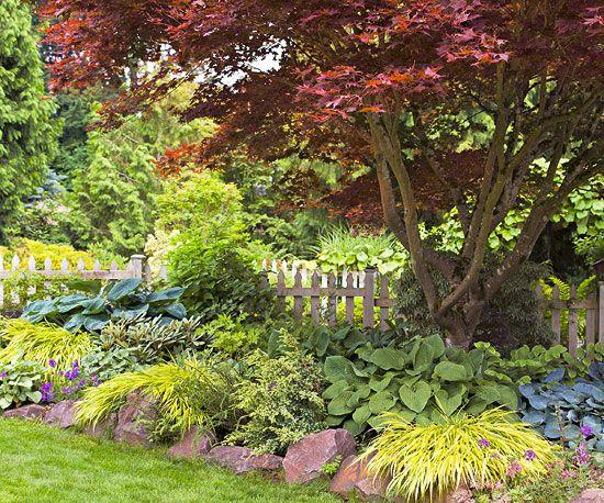 54 Best Japanese Maples Landscaping Images On Pinterest