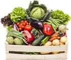Apply for SNAP - Food Stamp Program in Utah