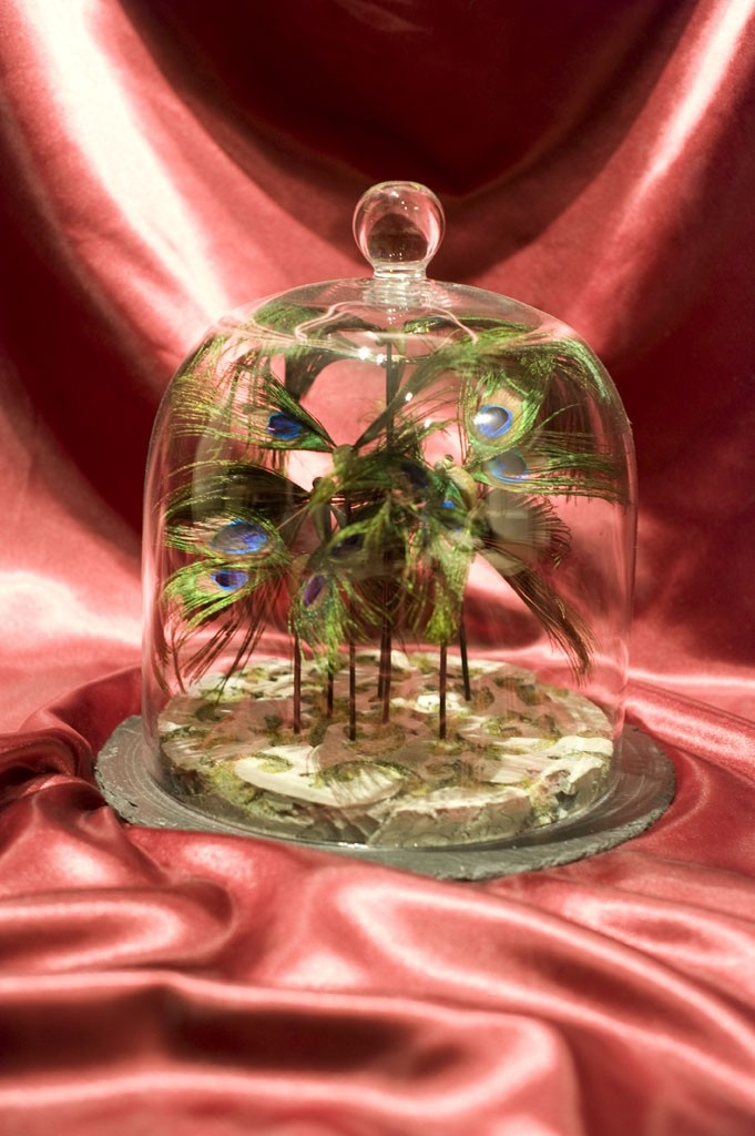 1000+ ideas about Cloche En Verre on Pinterest  Cloche, Globes and ...