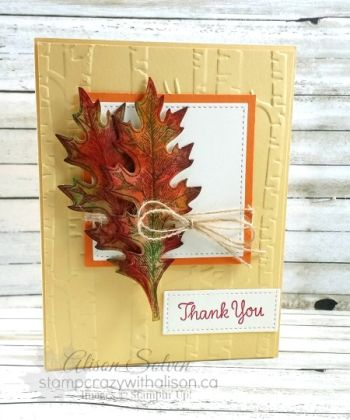 Colour Your World Vintage Leaves www.stampcrazywithalison.ca