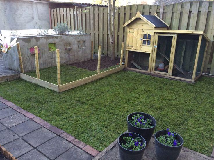 15 pins over kippenhok tuin die je moet zien kippenrennen kippen houden en kip huizen - Hoe amenager tuin ...