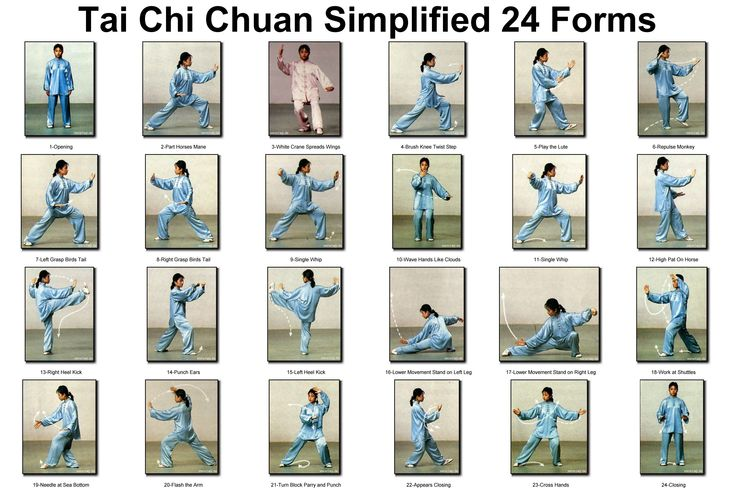 tai chi exercises 24 forms chart