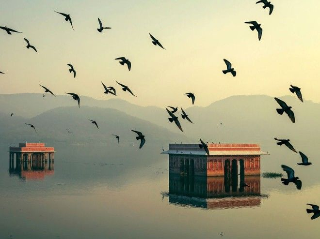 Jal Mahal, India | 1,000,000 Places