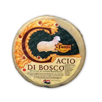 Queso Pecorino Trufado. Queso italiano de oveja. Exquisito sabor, aroma a trufa.