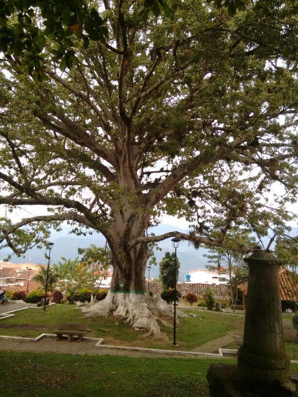 Parque El Convento, Socorro Santander
