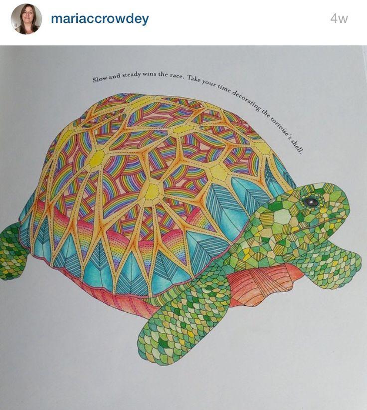 Colored Pencil Tutorial Johanna Basford Adult Coloring Books Crayon Pencils Animal Kingdom Colour Book Turtles