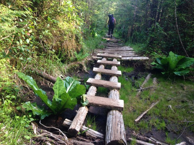 Cape Scott Trail.  May 2015