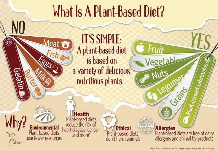 Whole Foods Plant Based Diet Recipes Blog