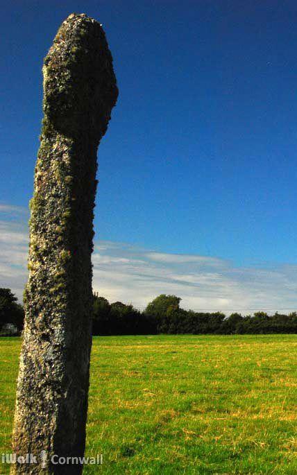 TRESINNEY WAYSIDE CROSS: the 8ft high wayside cross at Tresinney, near Camelford, Cornwall.