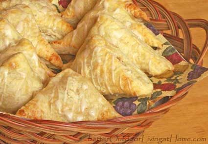 apple-cranberry turnover-recipe