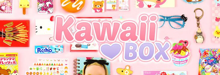 Kawaii Box http://www.incucinaconrolu.it/kawaii-box