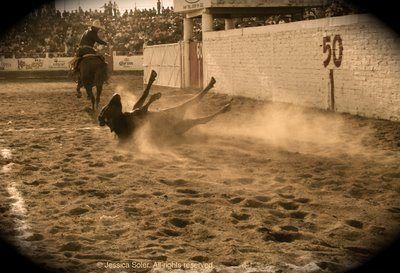 La Charreada: Una Tradición Mexicana | Corral de Concreto