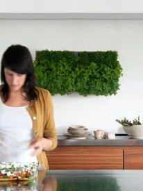 Karoo Pflanzenwand Vertikaler Garten - weiss 40 x 40 cm