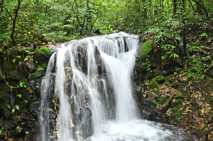 Rain Forest waterfall - Sensoria, Land of Senses in Guanacaste