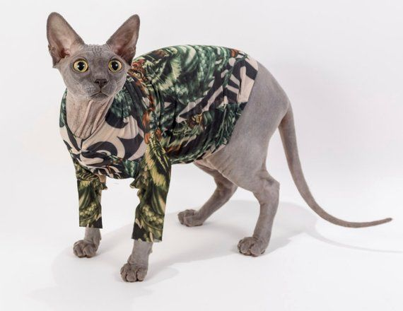 Sphynx Cat Clothes Dog Shirt Long Sleeves In Tiger Dragon By Tattcat Tattoo Cat Clothes Sphynx Cat Clothes Bambino Cat Sphynx Cat