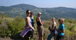 SEPTEMBER 19 – 26, 2015 SANTOSHA YOGA + WALKING RETREAT IN TUSCANY with DOROTHY PRICE. ♥♥♥♥♥♥♥♥♥♥♥♥♥♥♥♥♥♥♥♥♥♥♥♥♥ If you have always wanted to go to Tuscany…here is your chance to experience the rich culture, beautiful landscapes & delicious regional cuisine!