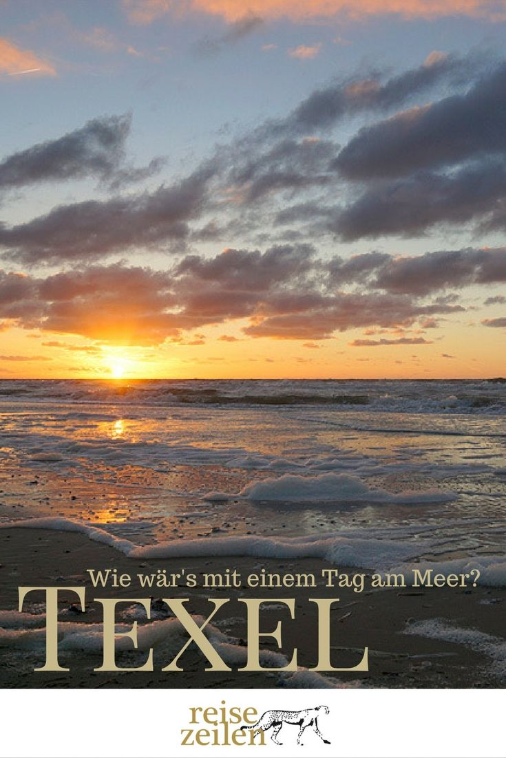 Texel Urlaub - Wie wär's mit einem Tag am Meer?
