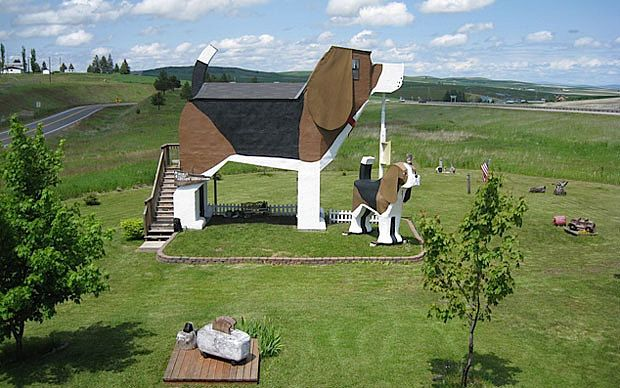 The Dog Bark Park Inn, Idaho, USA  The Dog Bark Park Inn takes the term 'dog lover' to a whole new level. Owned by chainsaw artists, the B&B is located inside a 12-foot beagle. Guests (it sleeps four) enter the beagle's body through the second-storey deck. It is, of course, pet-friendly.   50 of the world's most unusual hotels