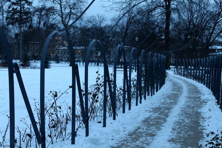 Wejherowo - Park , aleja  #Wejherowo #Aleja #Photography #ILovePhoto