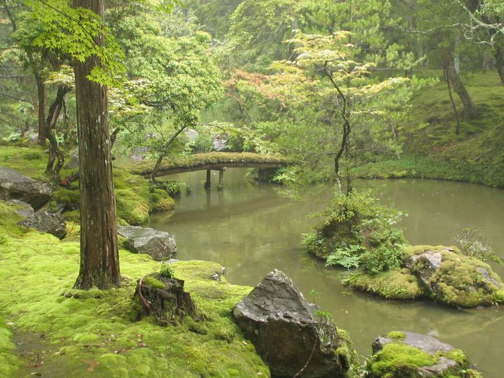 Moss Temple in Kyoto, Japan