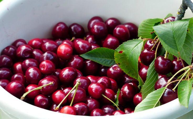 Esta fruta evitará problemas del corazón y eliminará la grasa, entre otras ventajas