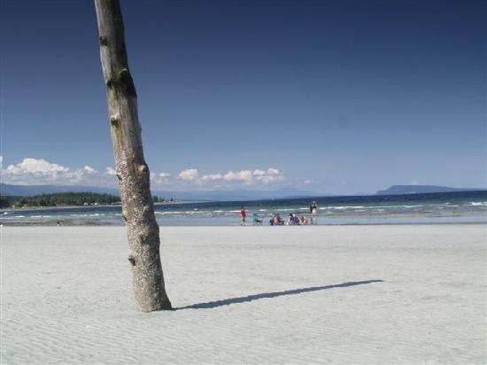 Qualicum Beach is part of over 19kms of sandy beach in the Parksville-Qualicum area of Vancouver Island!