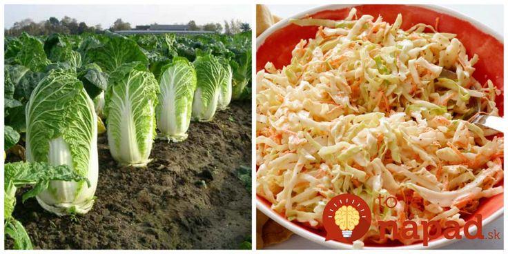 Stavte na tento zelený zázrak a nemusíte riešiť jojo efekt: Čínsku kapusta nakopne pomalé trávenie a zatočí s kilami zdravo + super šalát na chudnutie!