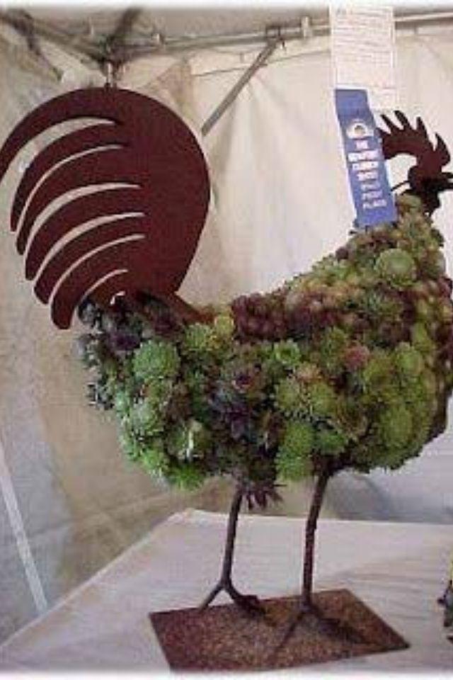 Chicks and hens | Flowers | Pinterest | Hens