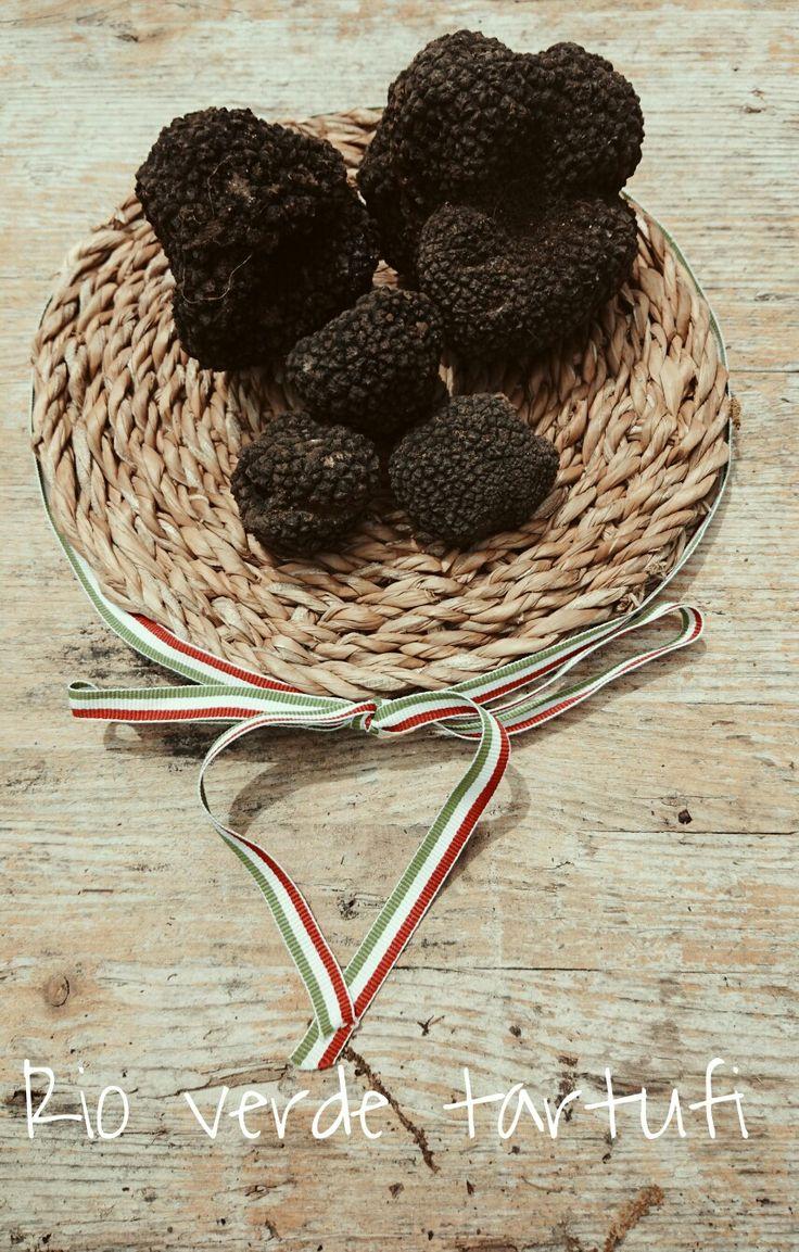 Tartufi neri estivi Best italian Black truffle Rio Verde Tartufi