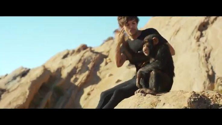 Love Lou n the chimp