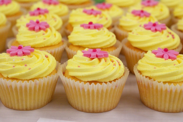 Fabulous Cupcake Decorating with Gina from Miss Ladybird Cakes | Sandringham, VIC (Image by tarale via Flickr)