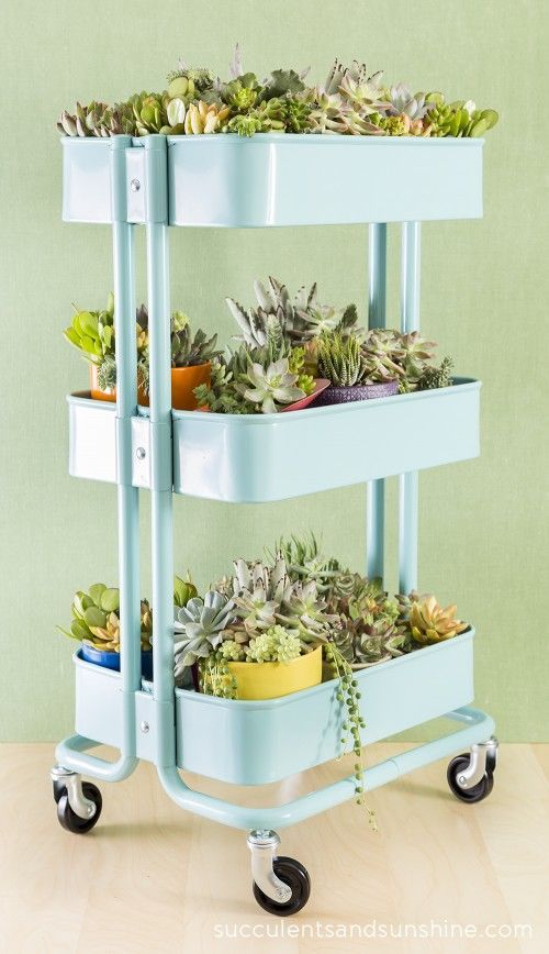 Succulent Garden In A Cart garden gardening planters succulent garden ideas indoor garden ideas outdoor garden ideas