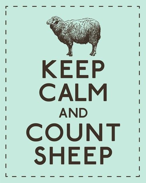 Keep calm and count sheep. #keep_calm #sheep
