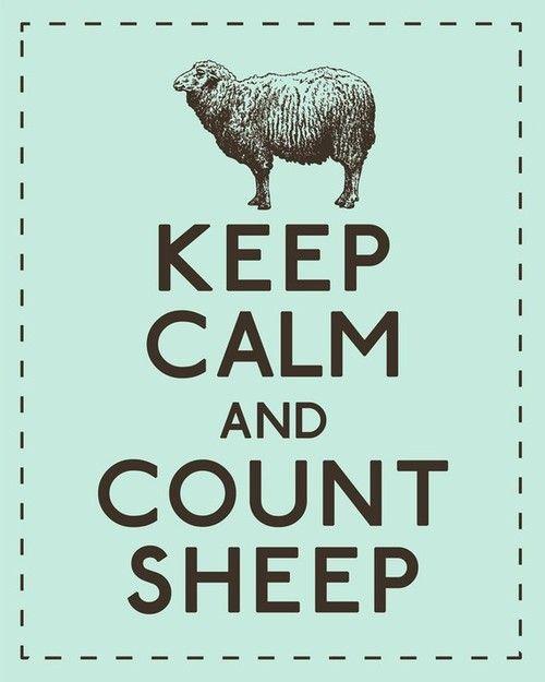 Keep calm and count sheep. #keep_calm #sheep