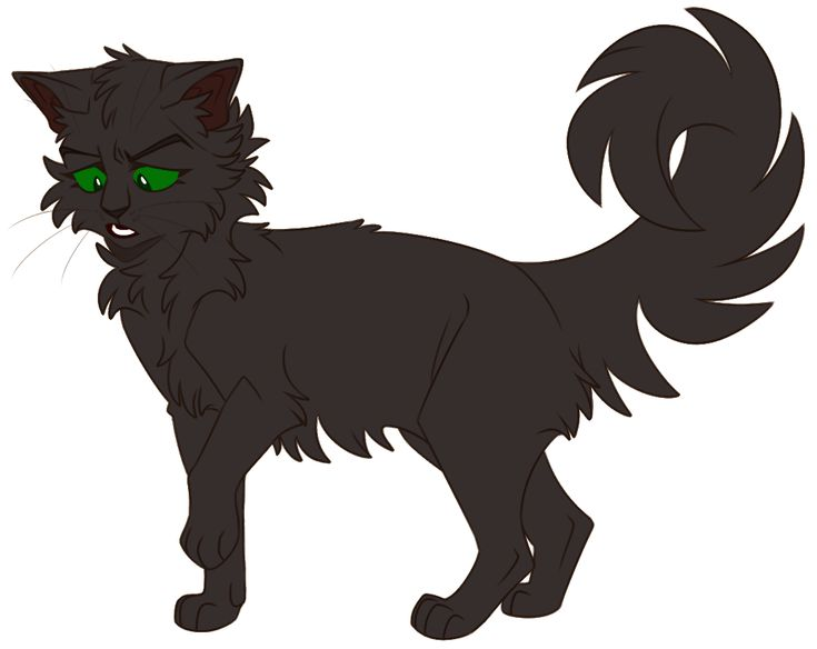 Warrior Cats Graystripe With A Transparent Background