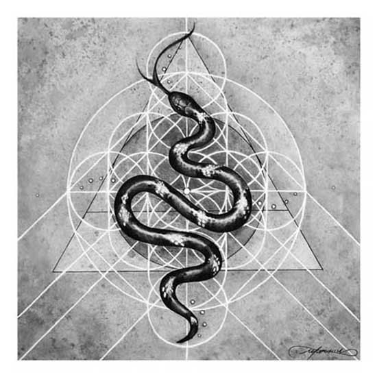 Milk Snake Serpent Art Sacred Geometry by DreamerFineArts on Etsy