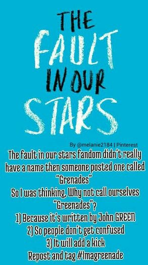 """No, because we are already Nerdfighters, well, some of us are. 2. It will draw negative attention. I would be kinda worried if a teenager were talking and they just randomly say, """"Oh, guys, I'm a grenade."""" 3) WE DON'T NEED A FANDOM NAME. WE LIVE UNDER ONE SUN. NOT WHERE WE CAN JUST ANNEX OURSELVES. THIS AIN'T TEXAS."""