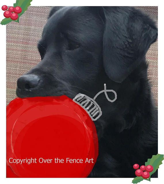 Black Labrador Christmas Card Dog Celebrates Christmas with