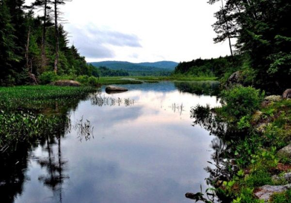 New Hampshire:  #Caretaker needed for home and grounds located in #NewHampshire.