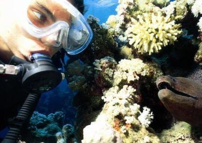 Marine Biology Camp in Caribbean for teens***** OMG pleaseeeeee