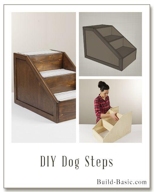 Construir bricolaje Pasos para perros - Planes del edificio por @BuildBasic www.build-basic.com