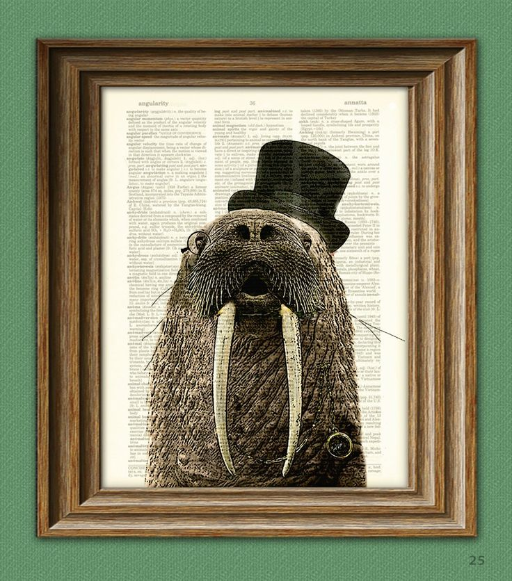 Walrus Art Print Aristocrat WALRUS with a top hat, monocle, and fancy watch illustration beautifully upcycled dictionary page book art print. $7.99, via Etsy.