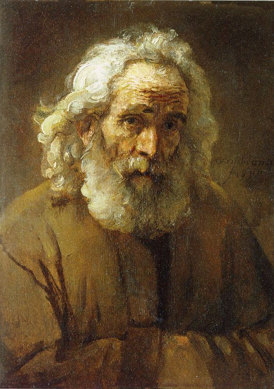 Image Collection #3: Old Age 80s-90s I quite like the variety of planes in this portrait. Study of an Old Man with a Beard (Rembrandt van Rijn