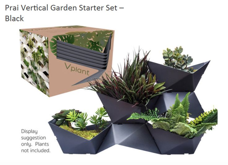 Prai Starter Kit in Black:  Starter kits are available in 4 colours - black, white, brown and green.  Each kit contains 6 x Prai baskets, 2 L brackets and  2 S brackets.  Basket diameter: 15cm H x 30cm W x 28cm D  Buy at www.coolplants.co.nz