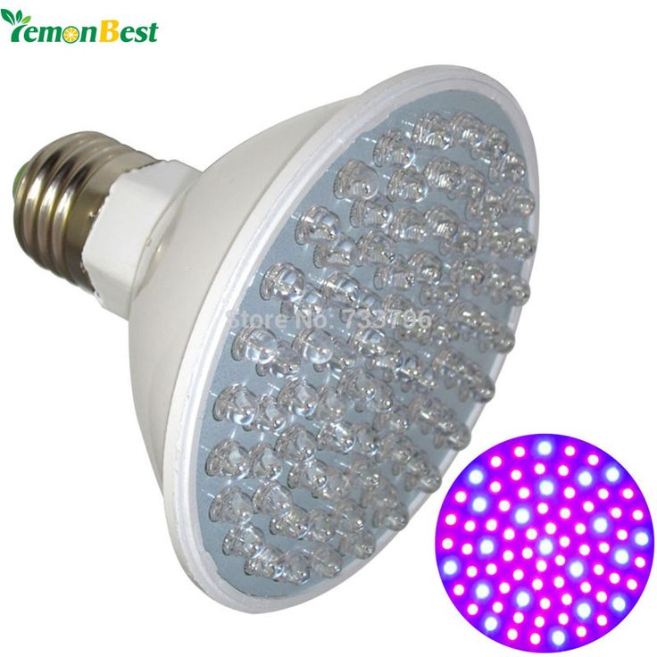LemonBest Newest Hydroponics Lighting 4.5W E27 LED 80 Leds Red and Blue Hydroponic LED Plant Grow Light Bulb 220V Free Shipping
