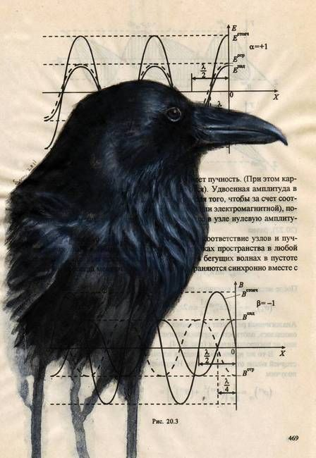 Raven - Amazing watercolors on an old book page.