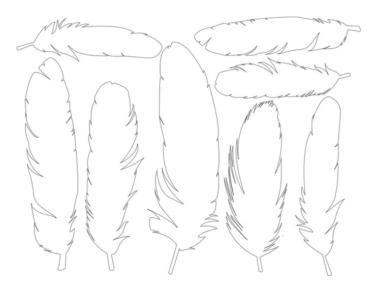 Free Printable Feathers - Dabbles  Babbles