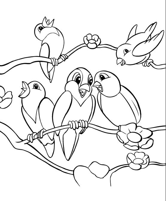 Singing Birds Coloring Pages