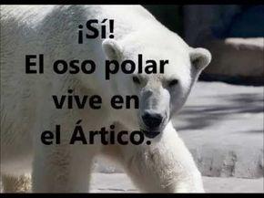 Los animales del Ártico y Antártida, documental
